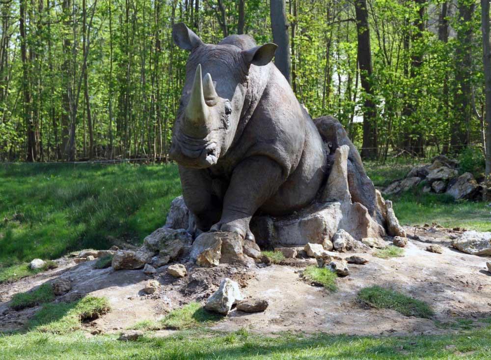 Réalisation d'un rhinocéros, usinage 3d, modelage, moulage, tirage en résine polyester.